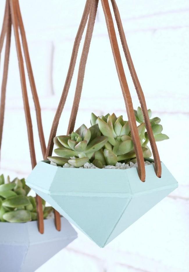 Succulentes.  Les pots peu profonds avec des formes originales ou des matériaux inhabituels sont les meilleurs pour les plantes d'intérieur succulentes