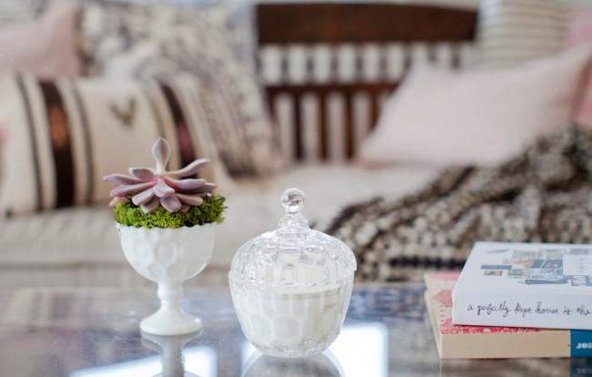 Succulentes.  Echeveria est une fleur d'intérieur commune et appréciée par beaucoup.  La couleur de ses feuilles varie énormément.