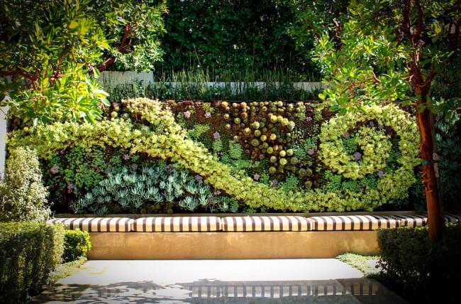 Succulentes.  À la hauteur de la mode dans l'aménagement paysager - jardinage vertical avec des plantes succulentes.  Même des mosaïques à grande échelle peuvent en être plantées.