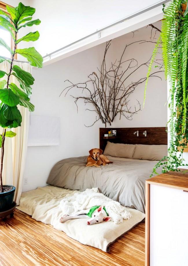 Une chambre inspirée de la nature.