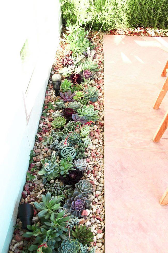 Un jardin de rocaille miniature avec des plantes naines, placé autour du périmètre de la terrasse, ajoutera de la personnalité à votre espace détente