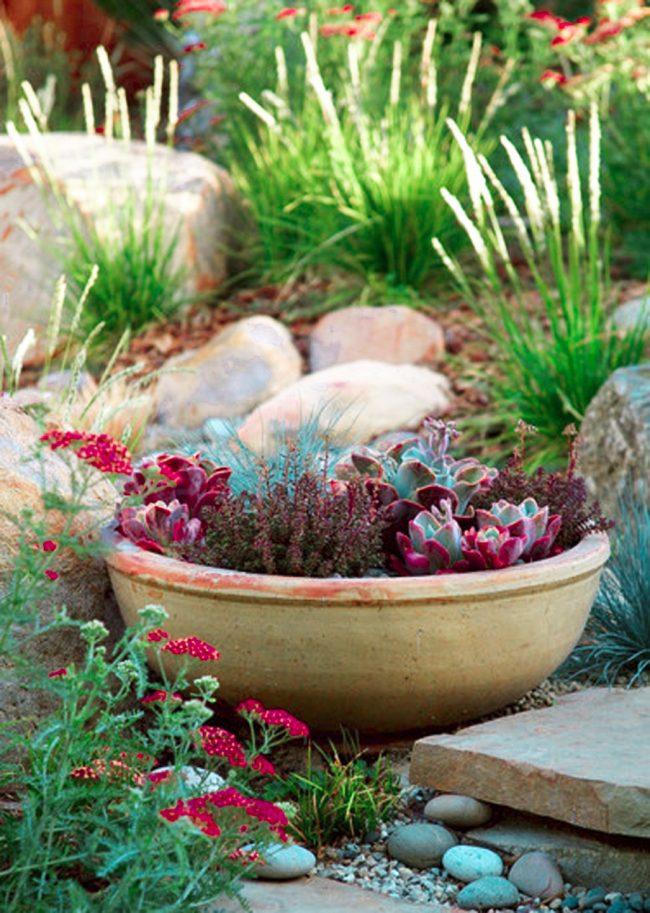 Décoration créative des jardins de rocaille - bol en argile avec des plantes