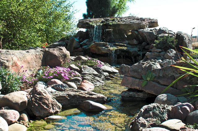 Pour concevoir un tel jardin de rocaille, des plantes naines sont utilisées, ainsi que de gros blocs de pierre qui imitent des fragments de roche