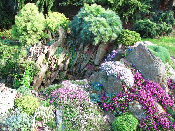 Des plantes plus grandes sont plantées sur le dessus du rouleau à pâtisserie, soulignant la dynamique de la différence de hauteur