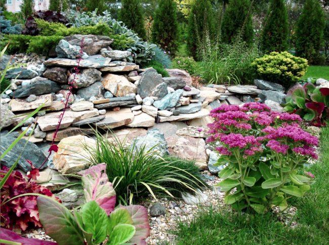 Un jardin de rocaille est un «point culminant» qui peut instantanément transformer l'apparence d'un paysage de jardin