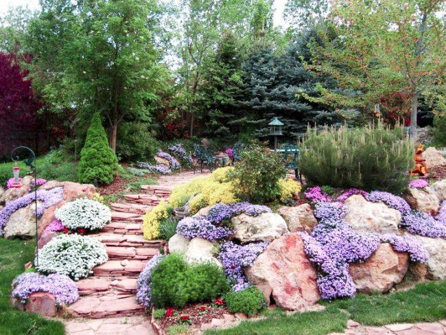 Le jardin de rocaille sert de décoration lumineuse du jardin, se détachant sur le fond de la pelouse verte