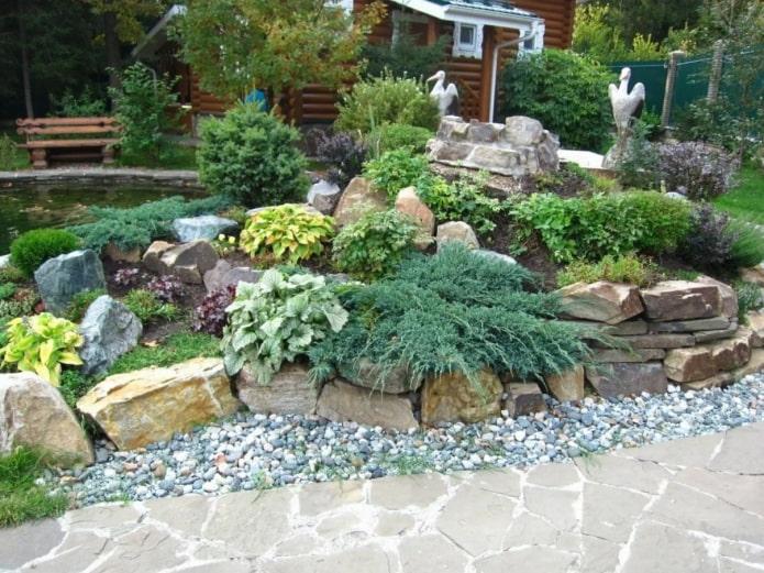 plantes pour le toboggan alpin