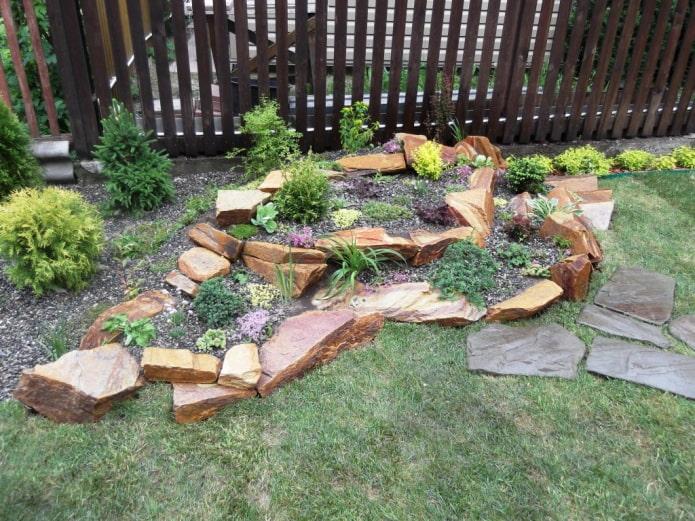 jardin de rocaille dans le jardin