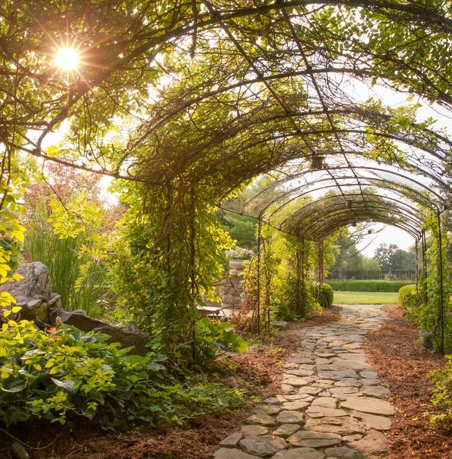 Un coin douillet dans un jardin nostalgique - une pergola entrelacée de plantes grimpantes