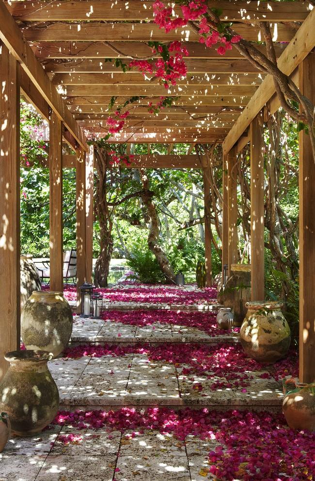 Magnifique tunnel de pergola enlacé de roses