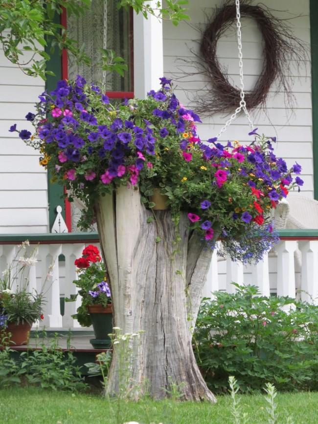 Arrangement de fleurs sur un journal