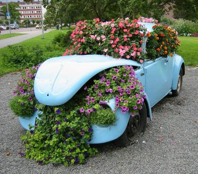 Parterre de fleurs en fleurs dans la voiture