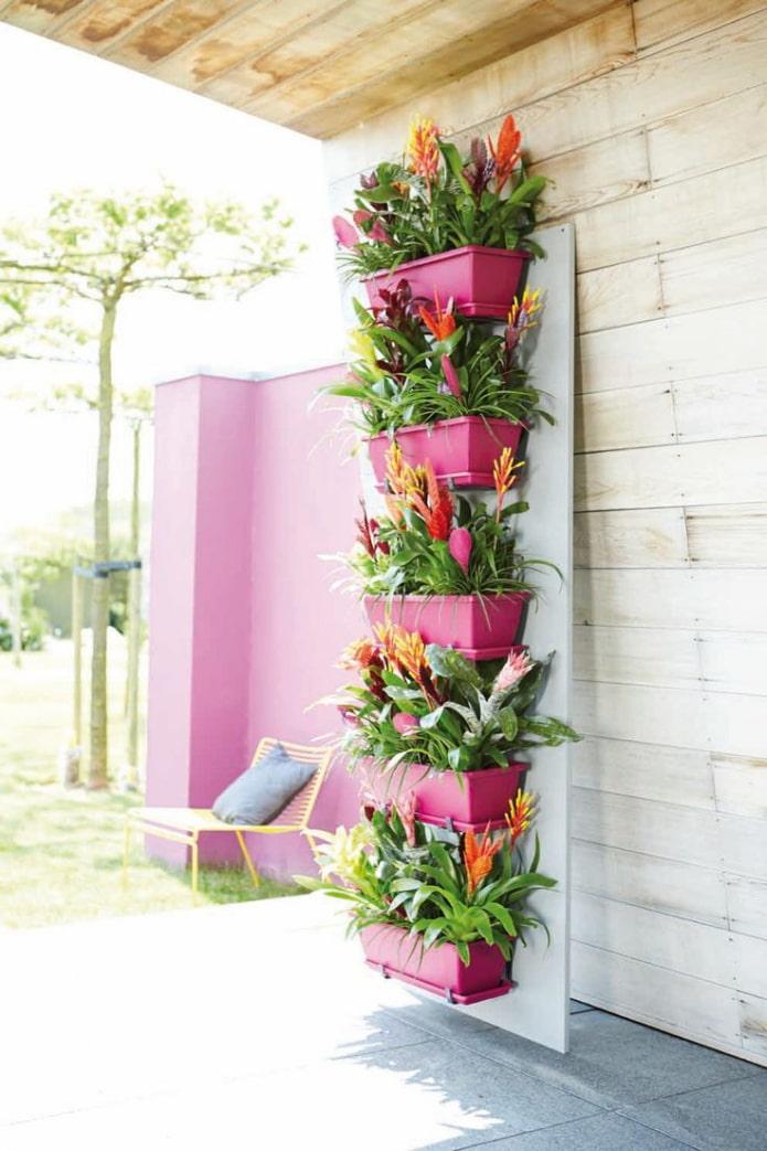 Parterre de fleurs sur socle en bois