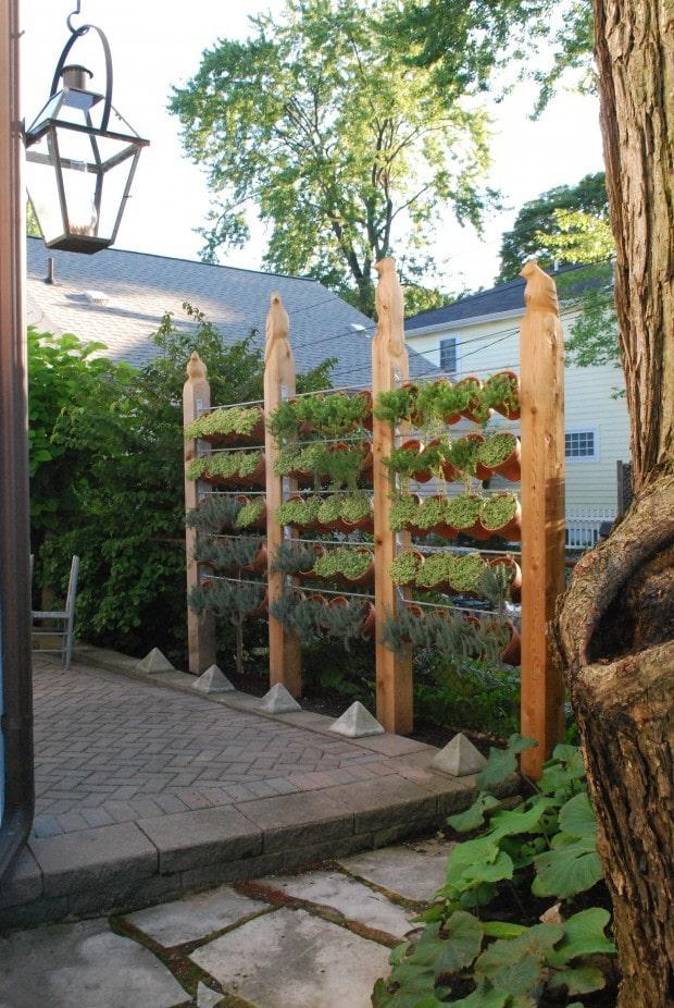 Écran de plantes en pots