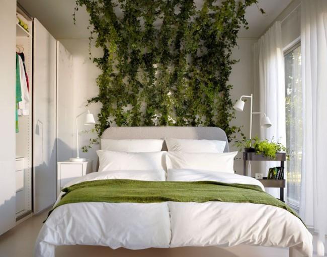 Décorer les murs de la chambre avec des plantes à tisser vivantes