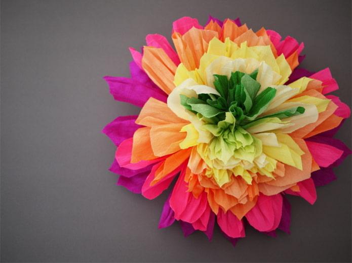 Grande fleur multicolore