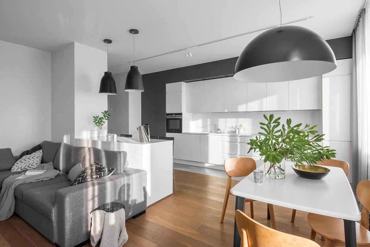 Cuisine-salon - photo