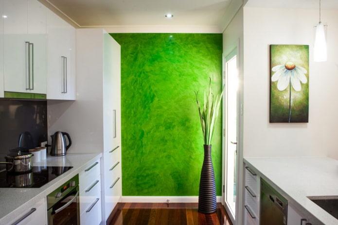 plâtre vert à l'intérieur de la cuisine