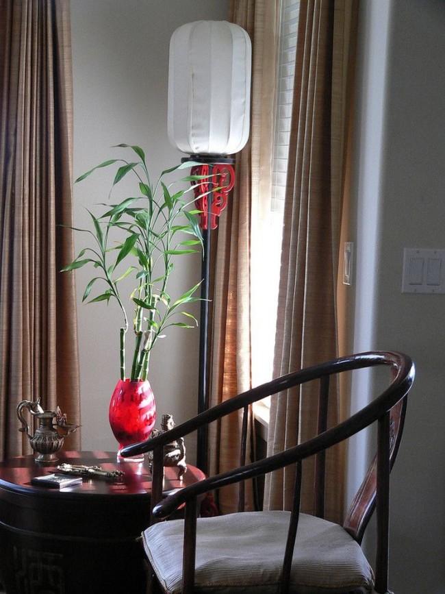 Sandera est très belle dans un vase en verre