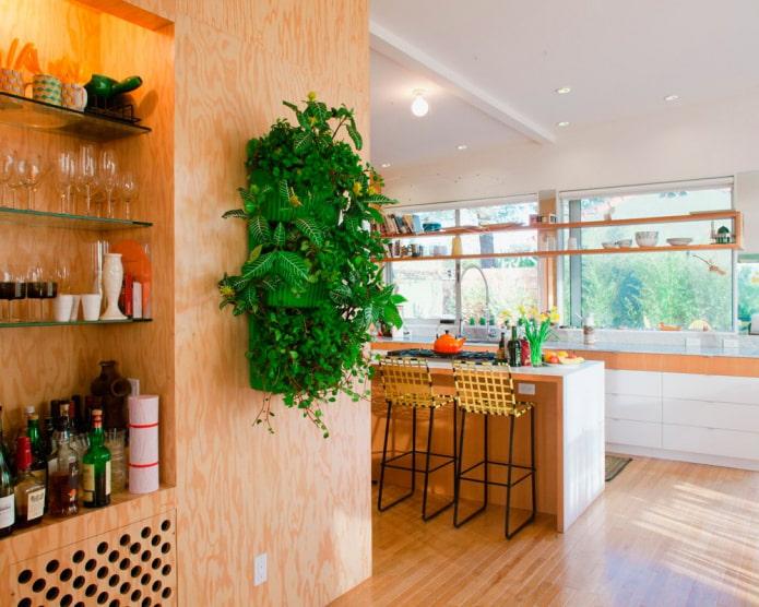 plantes sur le mur à l'intérieur de la cuisine