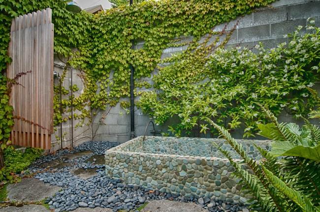 Aménagement de la cour avec différents types de plantes grimpantes