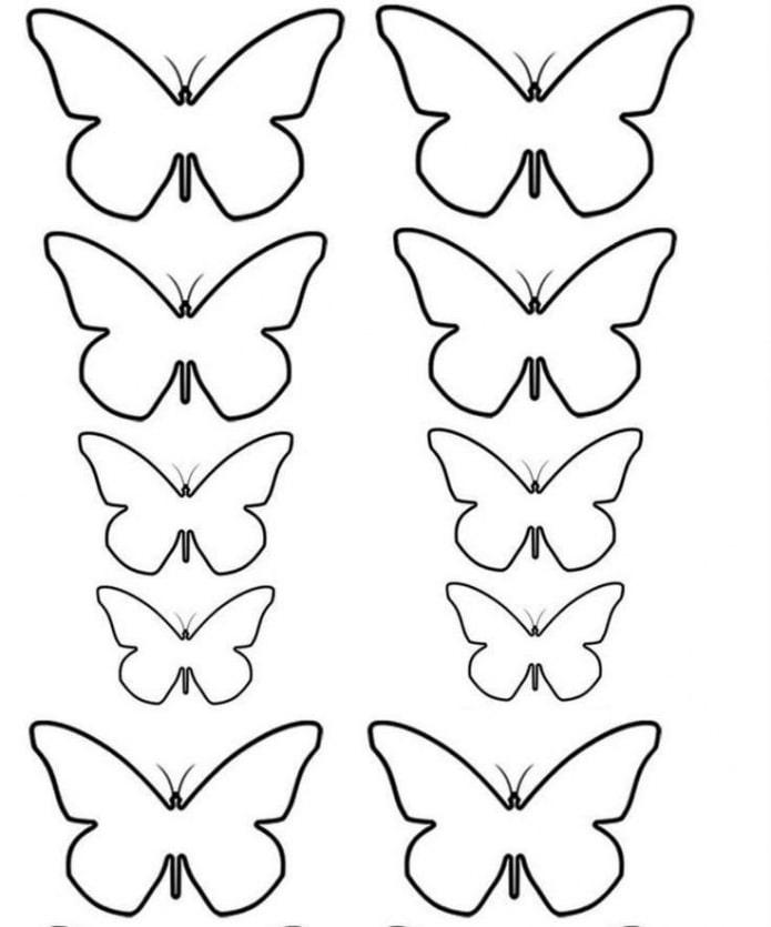 motif de papillons de différentes tailles