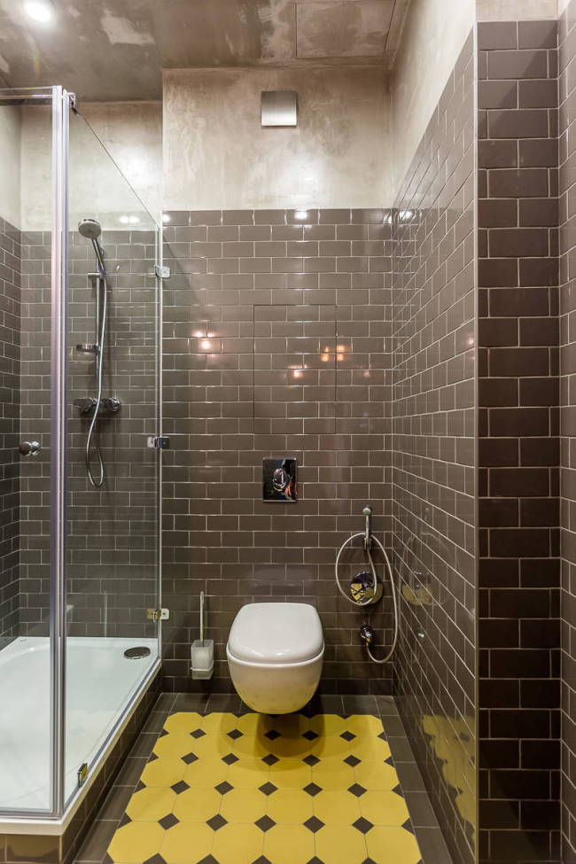 Carreaux de céramique dans la décoration de la salle de bain, combinés avec les toilettes