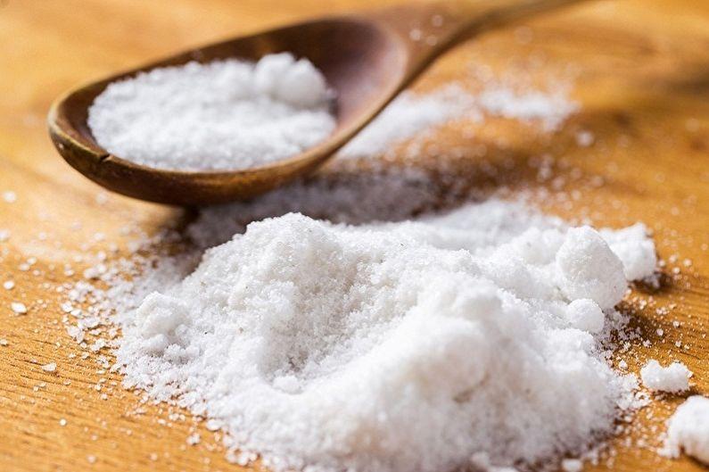 Comment nettoyer le fer des dépôts de carbone - Nettoyer le fer avec du sel