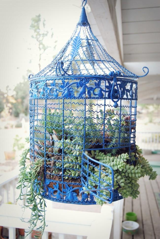 Une cage ajourée de couleur bleu ciel soulignera et complétera la composition des végétaux
