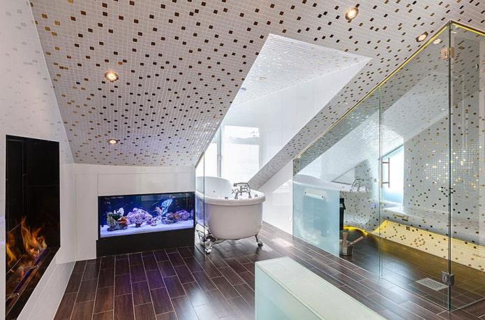 plafond carrelé à l'intérieur de la salle de bain