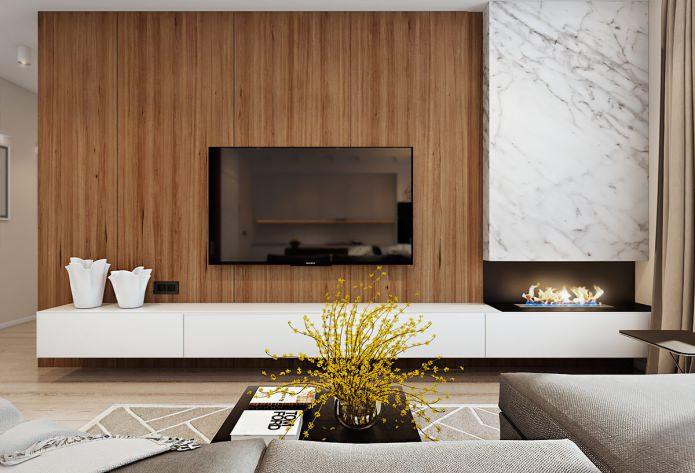 projet de salon avec cheminée bio