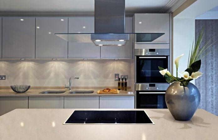 appareils électroménagers à l'intérieur de la cuisine dans un style moderne