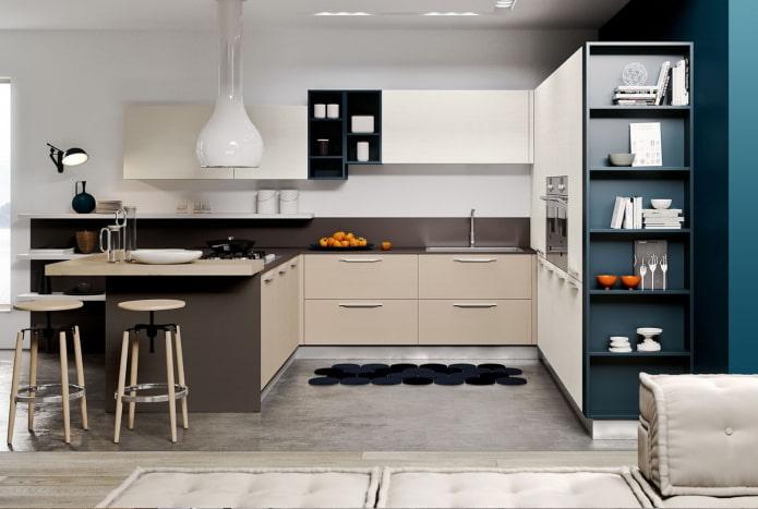 systèmes de rangement dans la cuisine dans un style moderne