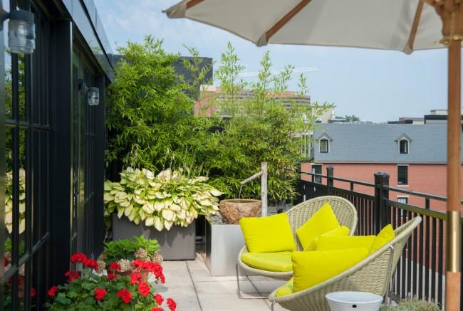 Oasis de verdure sur la loggia d'un appartement en ville