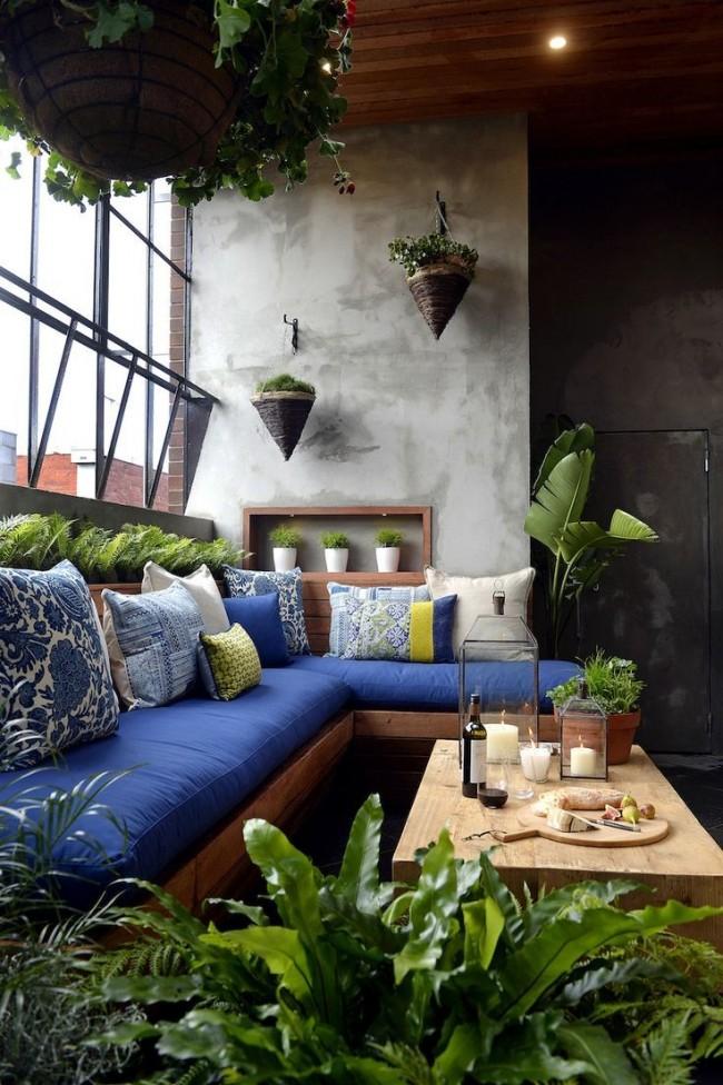 Les amateurs de plantes d'intérieur peuvent transformer un balcon en serre