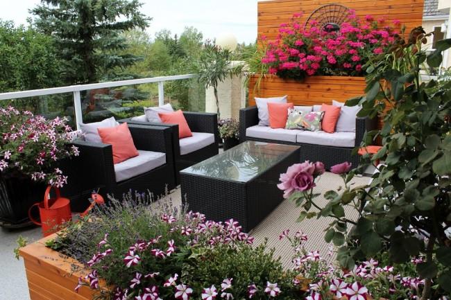 Des fleurs lumineuses et belles sur le balcon peuvent vous ravir toute l'année