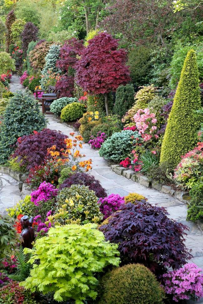 Un mélange de forme libre de plantes vivaces décoratives à feuilles caduques, conifères et herbacées est disposé le long d'un chemin sinueux