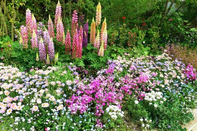 Jardin fleuri harmonieux