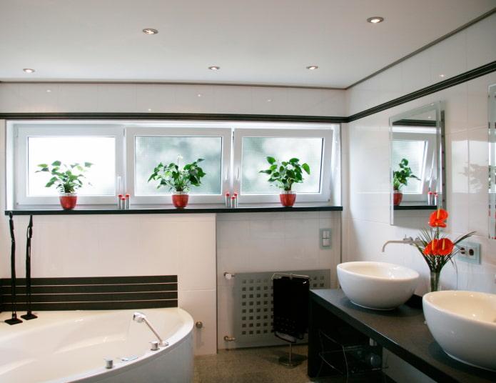 vitres givrées dans la salle de bain