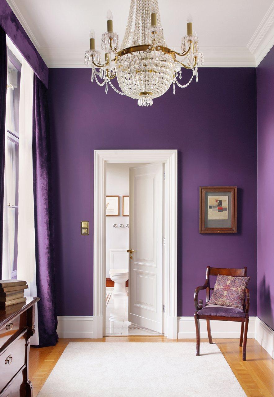 Photo 9 - Murs violets d'une beauté inhabituelle
