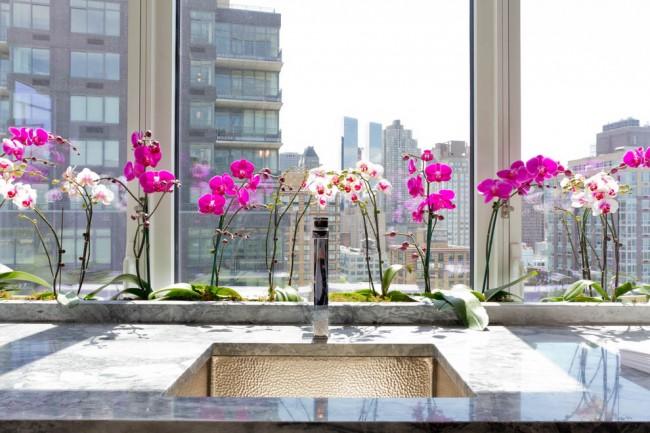Les espèces d'orchidées populaires pour la culture domestique ne sont pas particulièrement dangereuses.  Ils ne peuvent provoquer des maux de tête que chez les personnes sensibles aux odeurs.