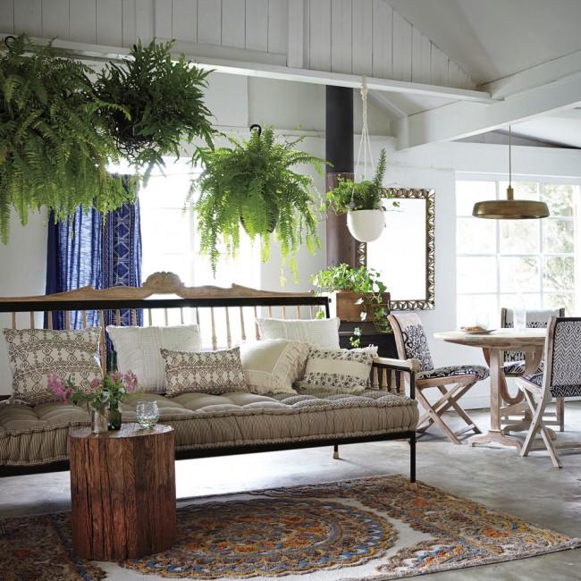 Fougères décoratives dans la conception du salon.  Les personnes allergiques doivent être prudentes avec elles