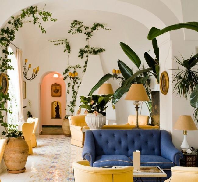 Ce sont des plantes grimpantes qui sont spectaculaires à la fois sur une fenêtre ombragée et dans presque tous les coins de la pièce.
