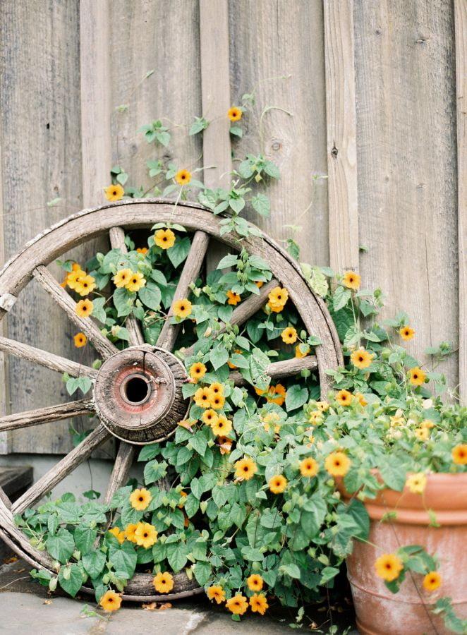 Roue avec des fleurs