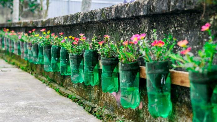 Parterre de fleurs sur une clôture faite de bouteilles