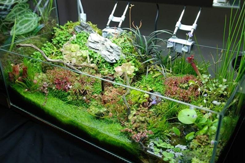 Florarium à faire soi-même - Rainforest