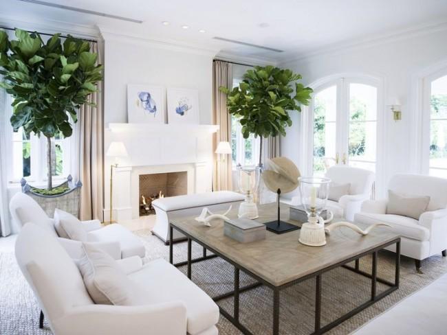 Des plantes vivantes comme déco dans un salon blanc