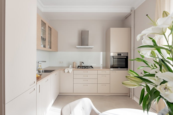 petite cuisine beige décorée dans un style moderne