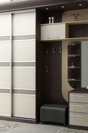 Armoires dans le couloir: idées de design