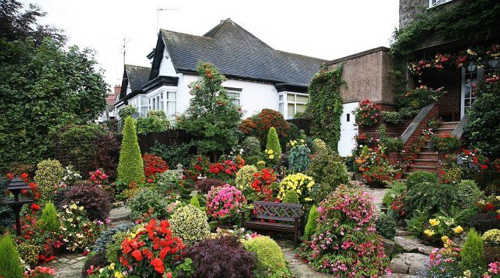Comment décorer joliment un jardin et un potager dans une datcha ?